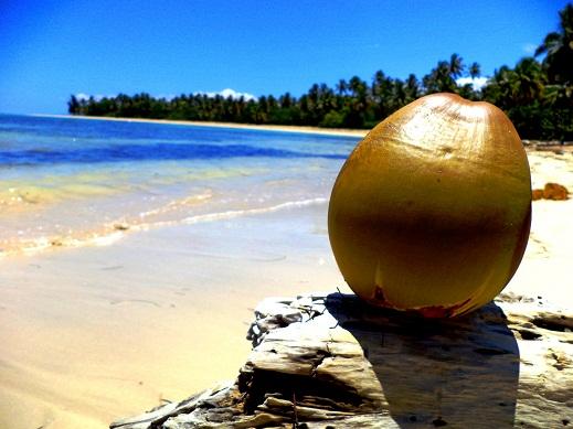 Spiaggie Las Terrenas